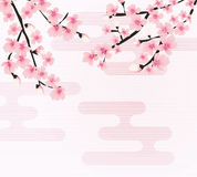 Vecteur floral abstrait de Sakura Flower Japanese Natural Background illustration libre de droits
