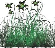 vecteur floral de fond Photographie stock libre de droits