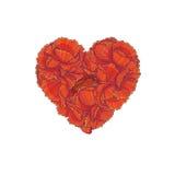 vecteur floral de rouge d'illustration de coeur Image stock