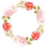 vecteur lumineux d'illustration de fleur de bouquet Composition décorative pour épouser l'invitation Image stock