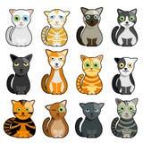 Vecteur mignon de chats Photo stock