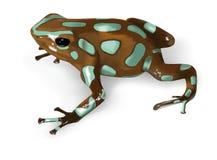 vecteur noir de poison de vert de grenouille de dard Photographie stock