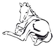 Vecteur noir et blanc d'un cheval Images libres de droits