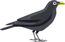 Vecteur noir mignon de corneille Photos libres de droits