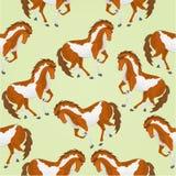 Vecteur pie de chevaux de texture sans couture illustration stock