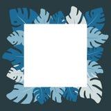 Vecteur plat exotique Feuilles tropicales bleues de place illustration de vecteur