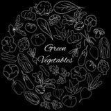 Vecteur réglé avec les légumes frais verts Illustration tirée par la main Photographie stock libre de droits