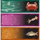 Vecteur réglé d'illustration de fruits de mer de bannières pour l'usage Images stock