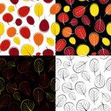 Vecteur réglé tiré par la main d'Autumn Leaves Seamless Pattern Background Photo libre de droits