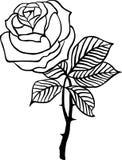 Vecteur rose de noir Photo stock