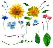 Vecteur rustique de fleurs Images stock