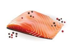 Vecteur Salmon Slice Fillet cru frais avec le papier rouge et noir Photographie stock