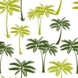 Vecteur sans couture en feuille de palmier de fond de modèle Photos libres de droits
