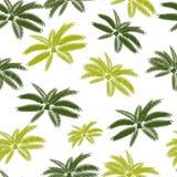 Vecteur sans couture en feuille de palmier de fond de modèle Photographie stock