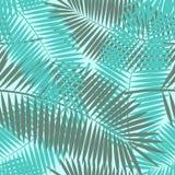 Vecteur sans couture en feuille de palmier de fond de modèle Image stock