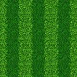 Vecteur sans couture rayé de champ d'herbe verte Image libre de droits