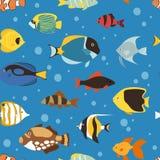 Vecteur sans couture sous-marin de fond de modèle de nature aquatique d'océan ou d'aquarium de poissons tropicaux exotiques Photo libre de droits