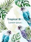 Vecteur tropical d'aquarelle de carte avec le décor coloré d'oiseaux et de palmettes de perroquet illustration de vecteur