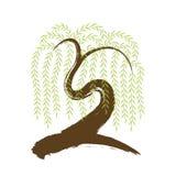 vector: árbol de sauce artístico del brushwork Imágenes de archivo libres de regalías