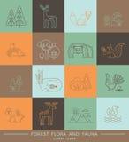 Vector ícones lineares da flora e da fauna da floresta Fotos de Stock