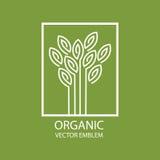 Vector абстрактная органическая эмблема, вензель плана, символ цветка Стоковое Изображение