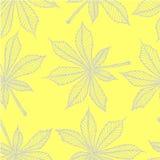 Vector безшовная картина - линейные листья каштана Серый цвет на желтом цвете Стоковые Фото