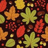Vector безшовная картина красочных листьев осени над коричневой предпосылкой Стоковые Изображения