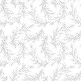 Vector безшовная картина сделанная ветвей нарисованных рукой Monochrome ботаническая винтажная иллюстрация вектора Свадьба вектор Стоковые Фото