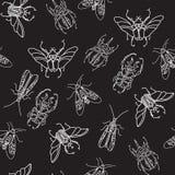 Vector безшовная картина с жуками на черной предпосылке Стоковые Фотографии RF