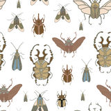 Vector безшовная картина с жуками цвета на белой предпосылке Стоковые Изображения RF