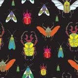 Vector безшовная картина с жуками цвета на черной предпосылке Стоковое Изображение RF