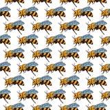 Vector безшовная картина с пчелами, листьями и цветками Черная и желтая текстура Стоковое фото RF