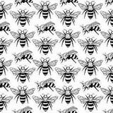 Vector безшовная картина с пчелами, листьями и цветками Черная и желтая текстура Стоковое Фото