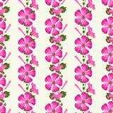 Vector безшовная картина с розовыми цветками и бутонами Стоковая Фотография RF