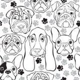Vector безшовная картина с собаками и трассировками сторон Monochrome b иллюстрация вектора