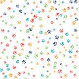 Vector безшовная картина с следами ноги кота или собаки Стоковые Фото
