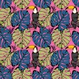 Vector безшовная картина с тропическими ветвями, листьями и птицами чертеж вручает ее нижнее белье утра вверх по теплым детенышам Стоковая Фотография