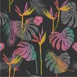 Vector безшовная картина тропических цветков, листьев бесплатная иллюстрация
