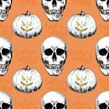 Vector безшовная картина человеческих черепов и стиля pumkins нарисованного рукой выгравированного Счастливый haloween Стоковая Фотография RF