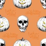 Vector безшовная картина человеческих черепов и pumkins на оранжевой предпосылке Стиль нарисованный рукой выгравированный Стоковая Фотография RF