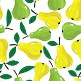 Vector безшовная предпосылка с желтыми и зелеными грушами. Стоковое Фото