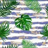 Vector безшовная тропическая картина листьев на предпосылке нашивок Стоковые Изображения RF