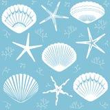 Vector безшовные морские звёзды и раковины на голубой предпосылке, соответствующей для печатать на различных поверхностях и текст Стоковые Изображения