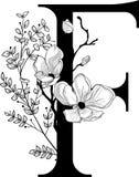 Vector вензель нарисованный рукой флористический f и логотип Стоковые Изображения