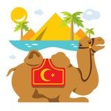 Vector верблюд и ладони в пустыне, оазисе Иллюстрация шаржа плоского стиля красочная Стоковое фото RF