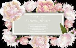 Vector винтажная флористическая рамка с цветками пионов на черноте Стоковая Фотография