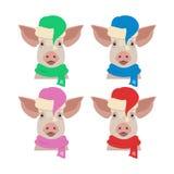 Vector голова свиньи в покрашенной зимой одежде Нового Года Стоковые Фотографии RF