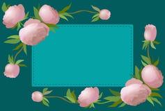 Vector граница иллюстрации флористическая с пионом для приглашений и поздравительых открыток ко дню рождения Стоковая Фотография