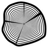 Vector деревянная текстура волнистой картины кольца от куска дерева Стоковая Фотография