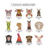 Vector животные голов китайского гороскопа в стиле шаржа плоском Стоковая Фотография RF